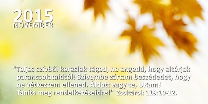honap_igeverse_weboldal_camar november