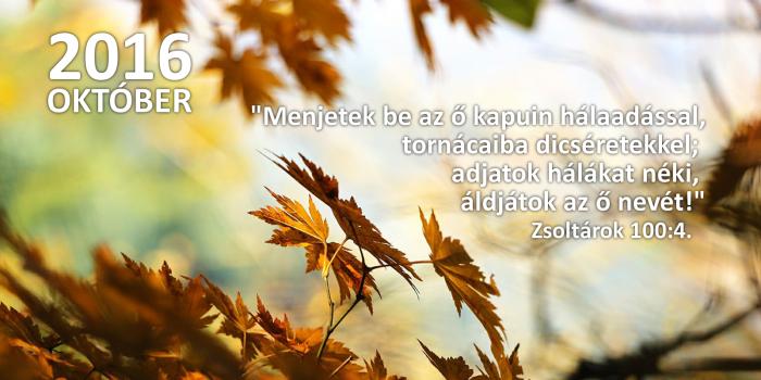 honap_igeverse_weboldal_camar-novemberokt